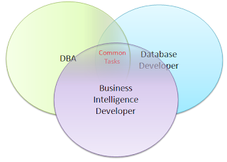A DBA or a Database Developer? (Article on SQLNetHub)