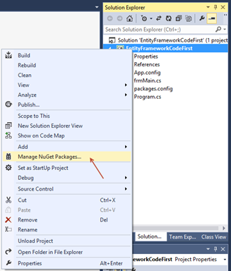 Entity Framework - Code First (Article on SQLNetHub)