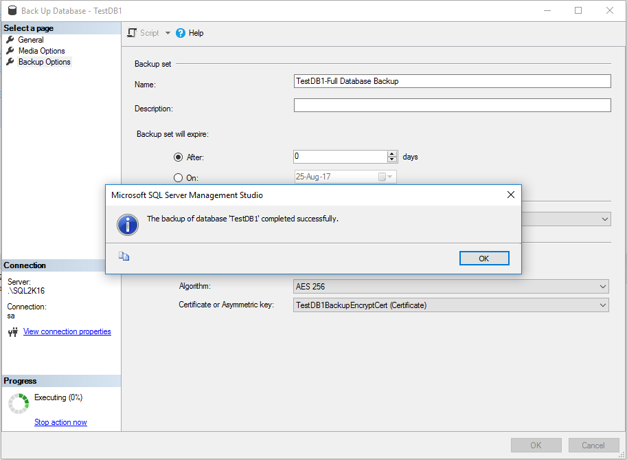 SQL Server Database Backup Encryption - Screen 5